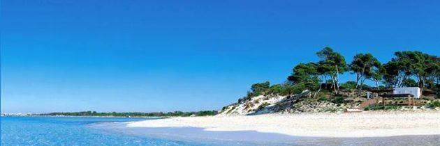 Ökologische Unterkunft,Tendenz des umweltverträglichen Tourismus
